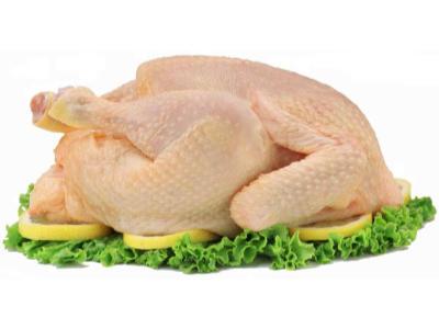 Pollo fresco